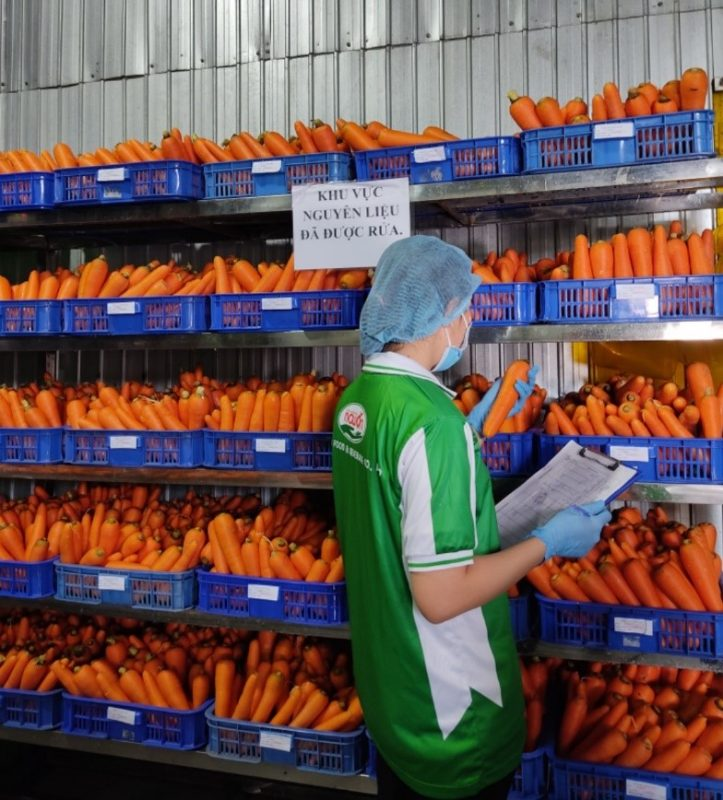 carrot fruit juice